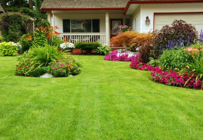 Assessing Your Outdoor Property