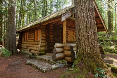 All You Need to Know about Cabin Insurance in Alberta