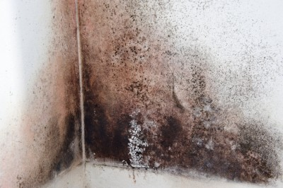 New Enhanced Water Damage Package for Home Insurance in Alberta